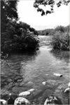 Christian Travel Journal, Bible Study & Prayers Journal: Jordan River Baptism Site